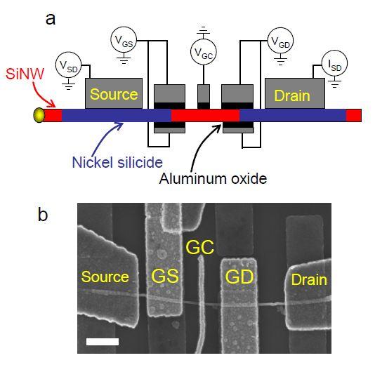 silicon_nanowire