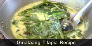 How to Cook Ginataang Tilapia Recipe