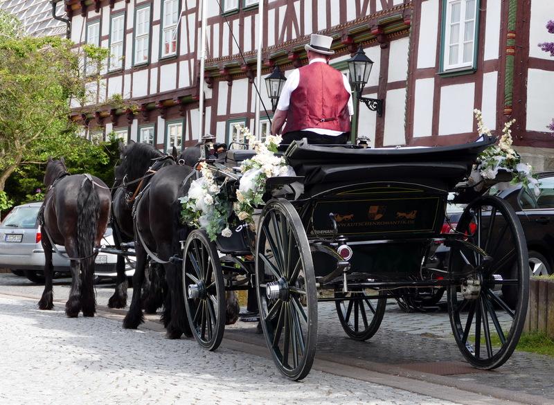 Kutschfahrten Und Pferdeausbildung Thuringen Ringo Liebau Galerie
