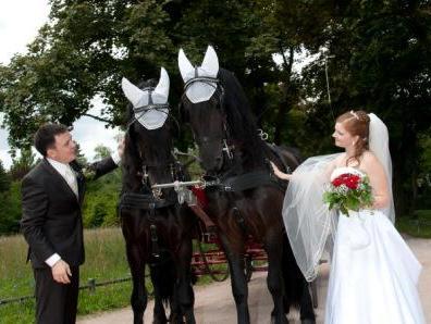 Kutschfahrten Aschaffenburg Und Spessart Hochzeitskutsche Und