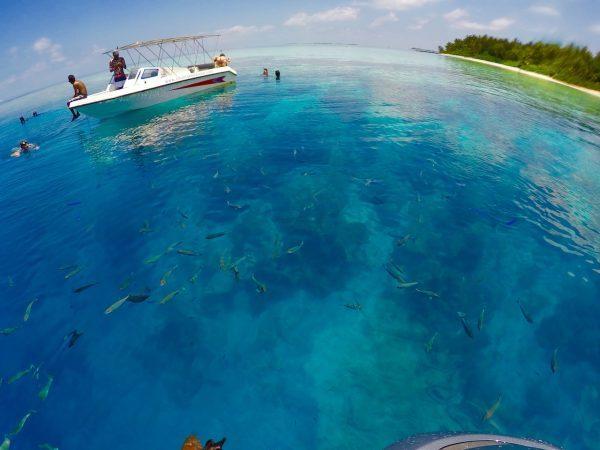maldivler-tatil-ulasim-balayi
