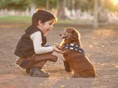 gyerekbarát kisméretű kutyák