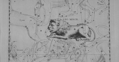Leo Minor volgens Hevelius