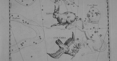 Lepus - Haas volgens Hevelius