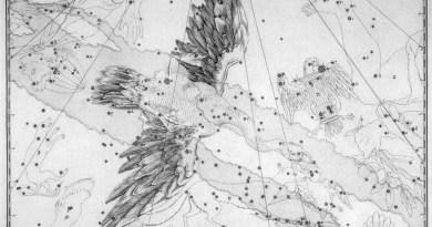 Het sterrenbeeld Cygnus - Zwaan uit de steratlas van Jon Bevis