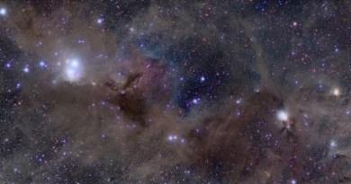 De moleculaire wolk in het sterrenbeeld Perseus