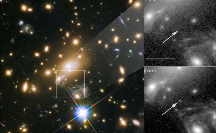 De ontdekking van LS1