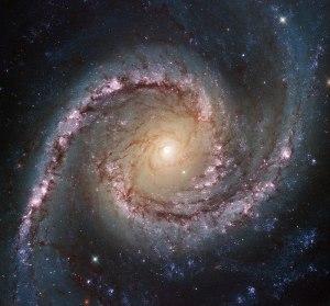 NGC 1566 in Dorado