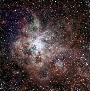 NGC 2070 in Dorado
