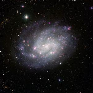 NGC 300 in Sculptor
