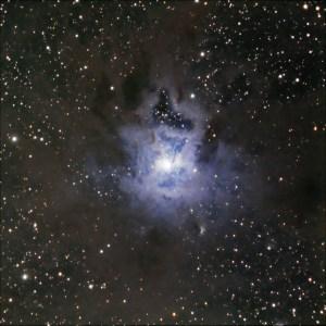 NGC 7023 in Cepheus