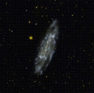 NGC 4236 in Draco