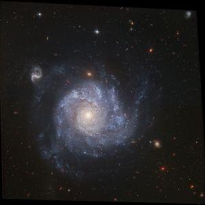 NGC 1309 in Eridanus