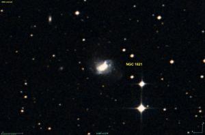 NGC 1821 in Lepus
