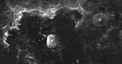 De Pistoolster - V4647 Sagittarii in de Quintuplet Cluster