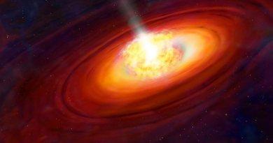 Illustratie van een protoster