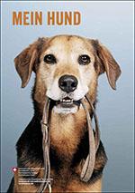 bvet_15_meinhund