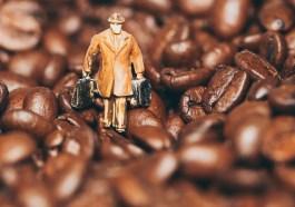Man Miniature Figure Coffee Beans  - Photorama / Pixabay