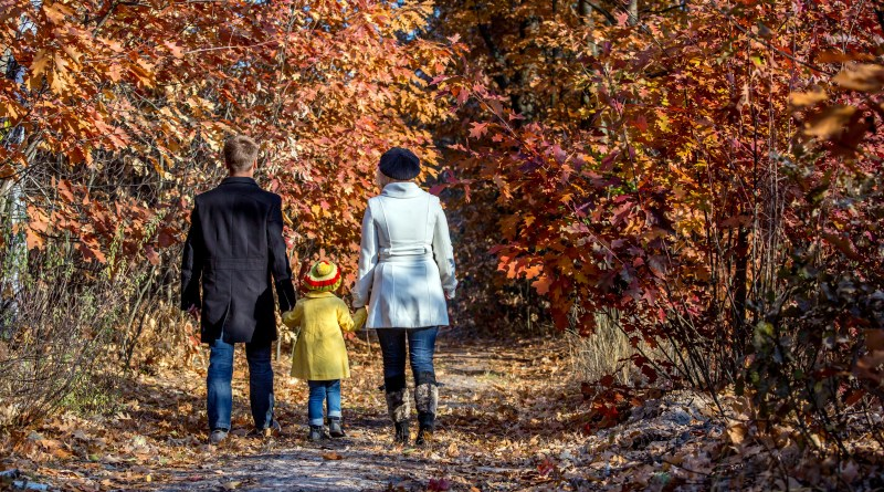 Two Generation Family Walking in Autumnal Forest Alley Father Mother Holding Hands of Little Baby Girl Bright Yellow Clothing Coat and Cap Back View