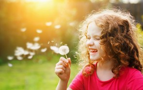 Little curly girl blowing dandelion in sunset light.