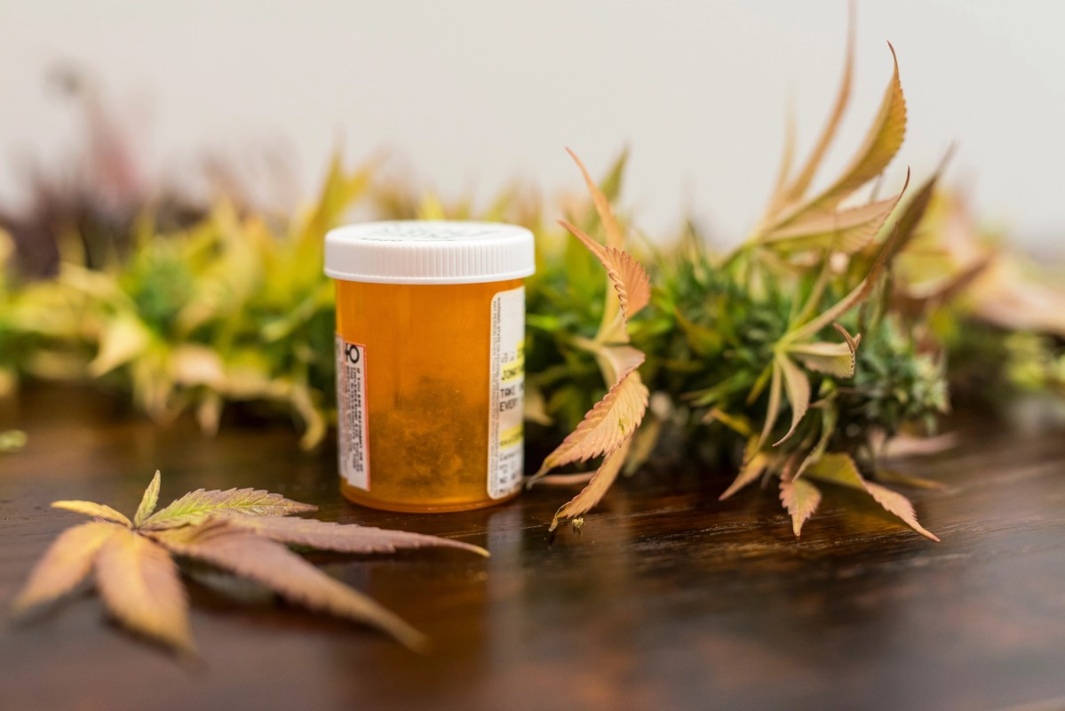 Medicine bottle filled with medical marijuana ready for patient pickup
