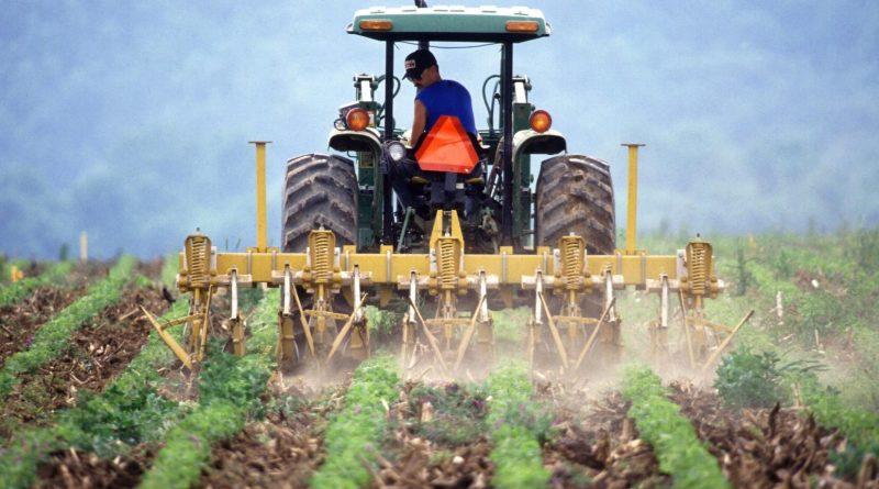Landbou en insetkoste