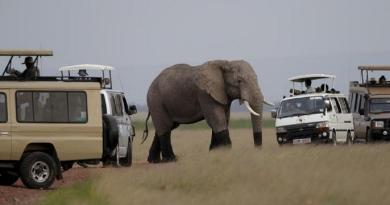 Botswana: Verbod op Olifantjag opgehef
