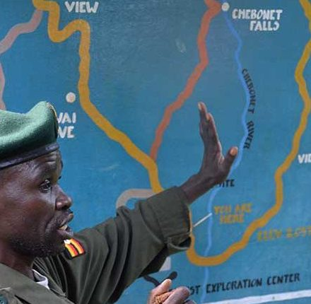 A ranger from the Uganda Wildlife Authority points out the hiking trail+Uganda+travel_with+Kwez+Outdoors