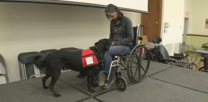 Service Dogs Inc._218060