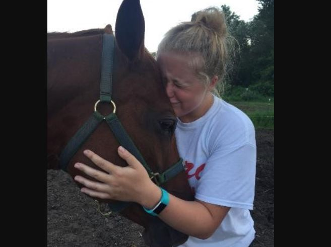 Horse killed in New York by tainted feed_627384