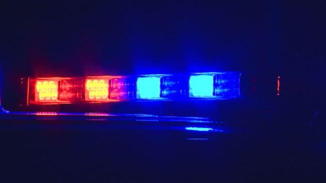 Generic police lights_306155