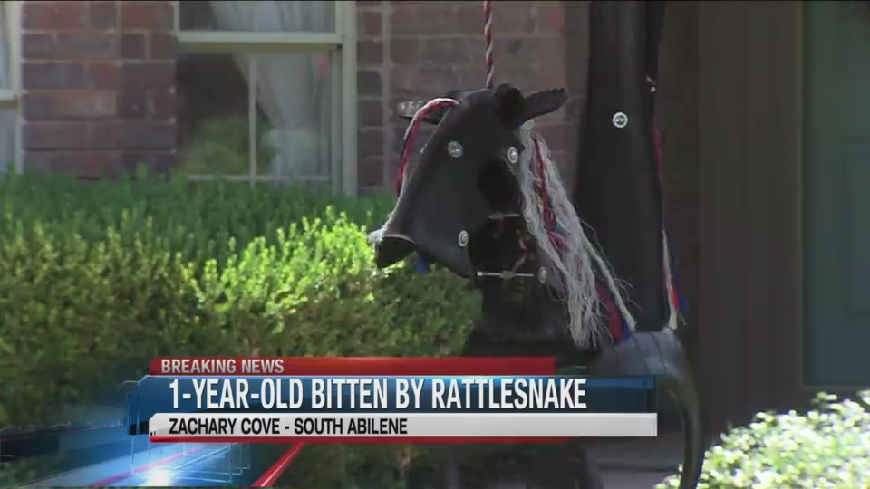 1_year_old_bitten_by_rattlesnake_hiding__0_20180626221614