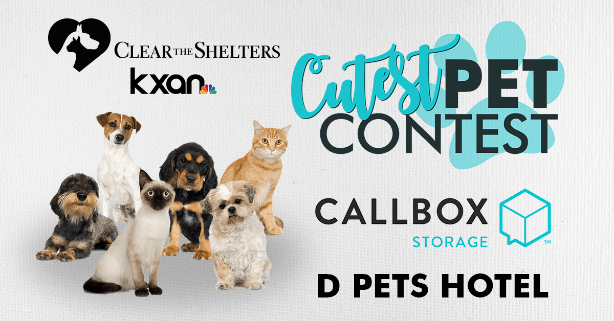 Cutest Pet Contest Display Ads - Facebook Normal_1534519492393.png.jpg