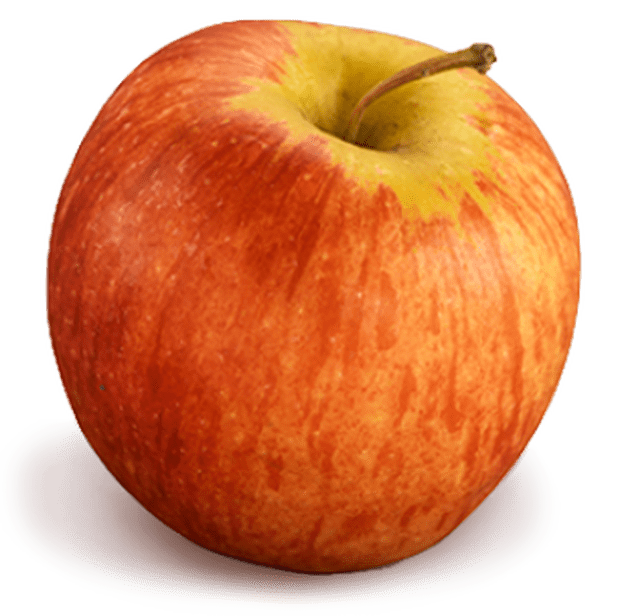 apple-gala-337x335_1535653958561.png