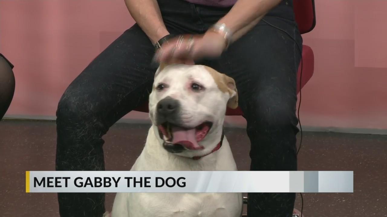Furry Friday - Gabby