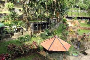 Reptil Taman Kyai Langgeng
