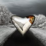 Metallic fixed heart above the road in middle of the winter trees with snow by Kyesos