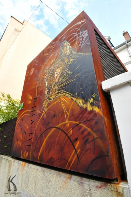 Rusted wall with cat street art by Kyesos