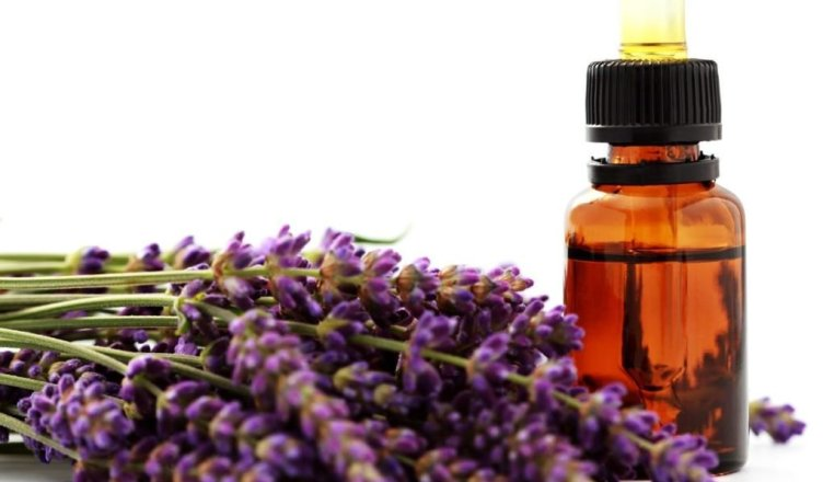 5 benefits of lavender oil