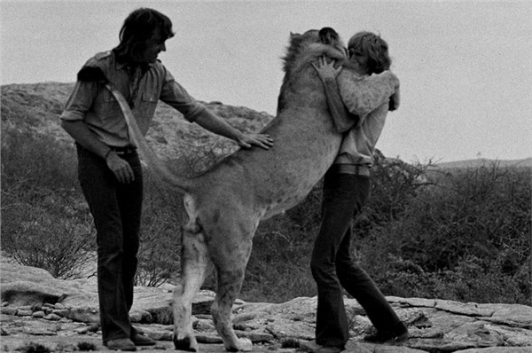 Real Love: Christian The Lion (video)