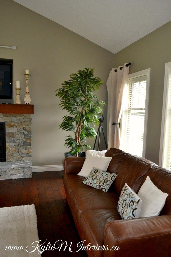Living Room Benjamin Moore Gray Mirage With Slate Stone