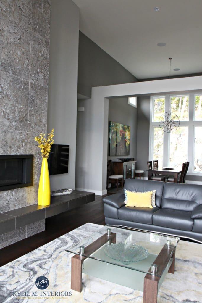Open Concept Contemporary Design Home Sherwin Williams