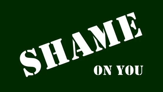 shame-on-you-rfk