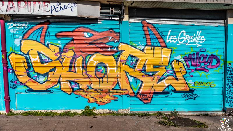 graffgresilles - kyonyxphoto-serie-graffiti-gresilles-10.jpg