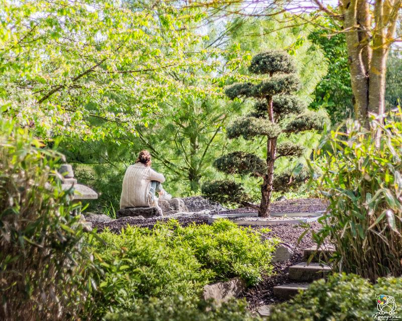 jardinjaponais - kyonyxphoto-serie-dijon-jardin-japonais-6.jpg