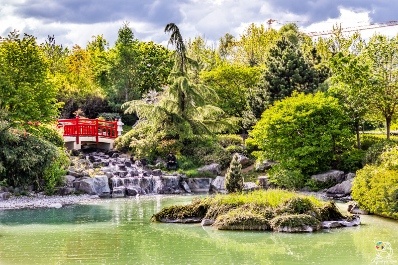 jardinjaponais - kyonyxphoto-serie-dijon-jardin-japonais-7.jpg