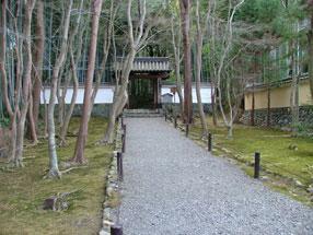 地蔵院(竹の寺)庭園の画像