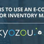 ecommerce solution for inventory management