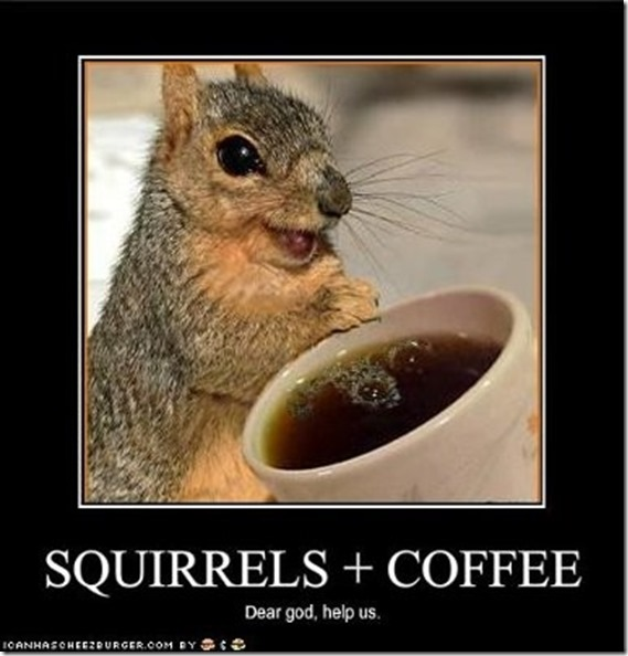 SquirrelCoffee