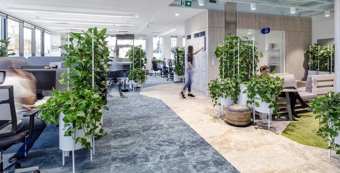 Aménagement bureaux avec plantes